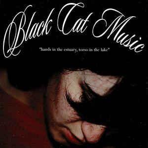 Black Cat Music – Hands in the Estuary, Torso in the Lake