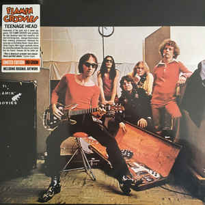 Flamin Goovies – Teenage Head