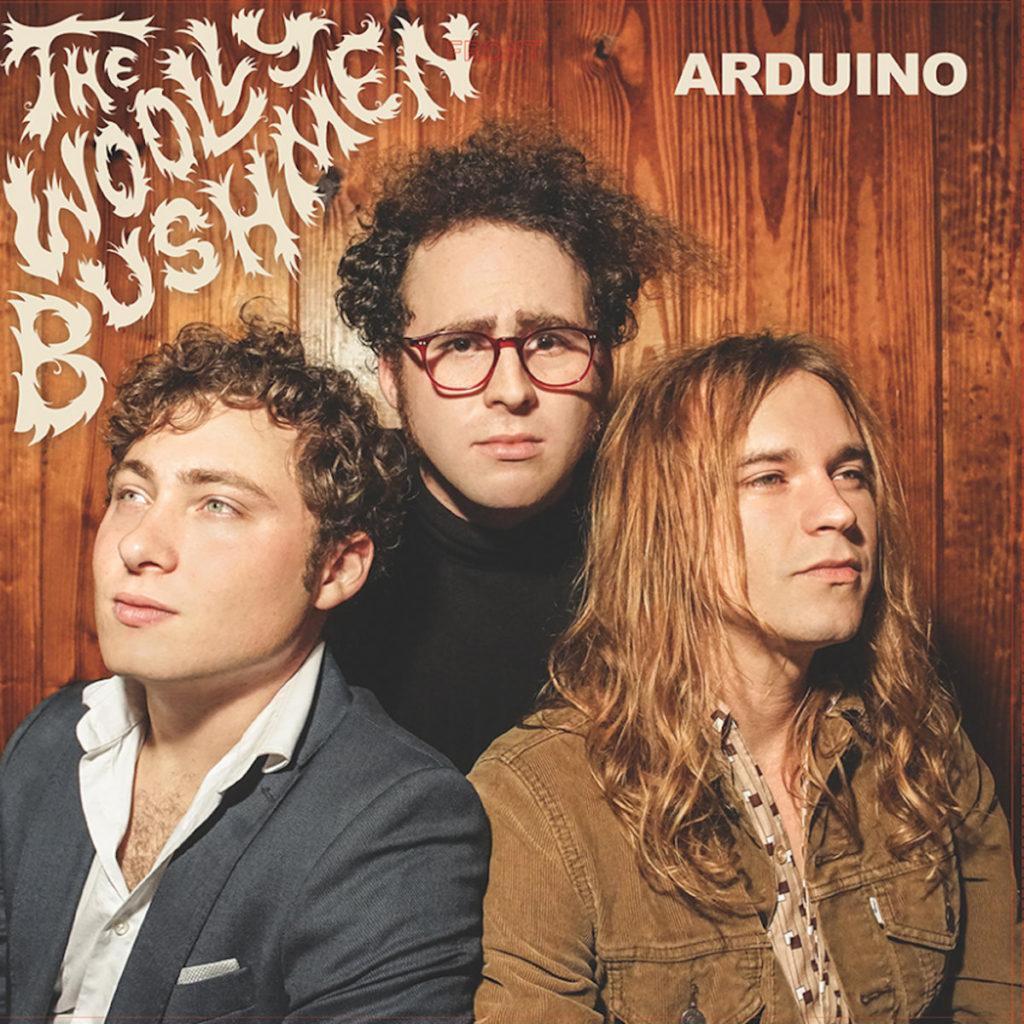 Woolly Bushmen – Arduino