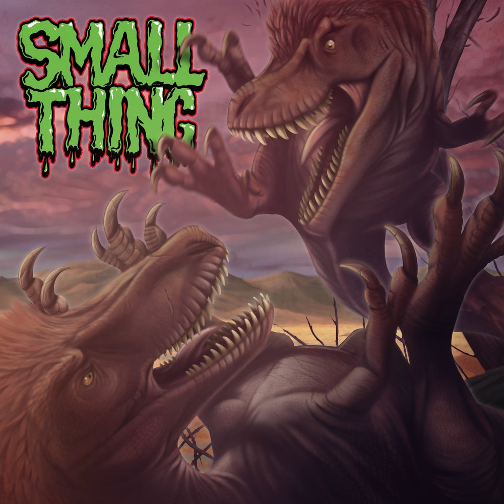 Small Thing – s/t CD